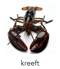 kreeft1