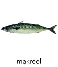 makreel1