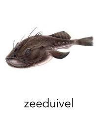 zeeduivel1